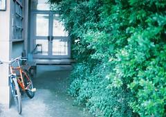 000001 (iwakura shiori) Tags: green film rain 35mm nikon filmcamera 緑 自転車 雨 フィルム フィルムカメラ