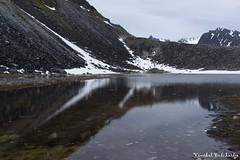 Magdalenefjorden. Svalbard, Norway (7 Jul 2013) (Vinchel) Tags: norway sony svalbard arctic adventure rx1 magdalenefjorden
