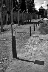 Auschwitz (PM Kelly) Tags: camp bw white black tower fence concentration gate war nazi jew jewish auschwitz prisoner