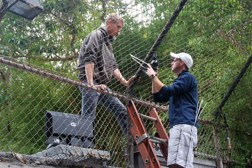 Testing Camera Trap at San Diego Zoo