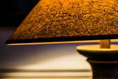 "Veined Light! (BGDL) Tags: light 50mm tablelamp textured niftyfifty 7daysofshooting d7000 118gnikon bgdl lightroom5 shootanythingsaturday""nikkor week23light"