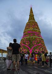 Christmas @ Vivo City (gintks) Tags: xmas b decorations singapore couples bluehour raining vivo 2013 vivocity singaporetourismboard celerabration festiveseasons christmas2013