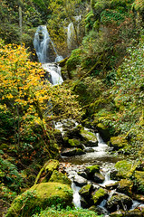 Harrison Falls on Lindsey Creek (2013) (A. F. Litt) Tags: november fall oregon waterfall unitedstates cascadelocks columbiarivergorgenationalscenicarea 2013 hcrh lindseycreek 023milepost2016sectioncsummitcreektolindseycreek harrisonfalls