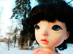Frosty (Liz/Daifuku_Darling) Tags: cute ball doll koo jointed mydolling danakoo