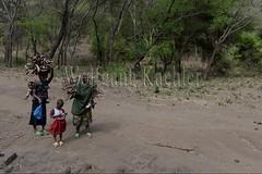 10071666 (wolfgangkaehler) Tags: africa people woman tanzania person african firewood carrying lakemanyara eastafrica eastafrican tanzanian environmentalimpact tanzaniaafrica environmentalissue lakemanyaratanzania environmentalconcern {vision}:{outdoor}=099
