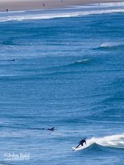 Winter Surfing, Oqunquit, Maine (21008) (John Bald) Tags: blue winter black surf maine wave surfing surfers wetsuit breakingwave ogunquit ogunquitbeach
