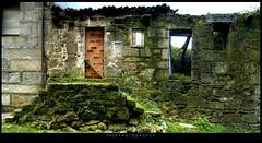 Piedra y musgo (RobertoHerrero) Tags: brick ladrillo musgo verde helecho ventana puerta panoramic ruina escalera fachada piedra mygearandme mygearandmepremium mygearandmebronze mygearandmesilver mygearandmegold mygearandmeplatinum escalera