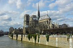 2014.03.02.07 PARIS - Notre-Dame (alainmichot93) Tags: paris france seine architecture cathdrale iledefrance notredamedeparis iledelacit 2014 artgothique paris4mearrondissement