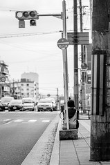 20140302_03_Fushimi (jam343) Tags: street bw monochrome car kyoto waiting busstop 京都 wait 日本 90mm signal fushimi 京都市 京都府 伏見