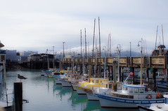 Boat's Row (Dan Panaitescu (light catcher)) Tags: sanfrancisco california marina boats bay pier39 hdr
