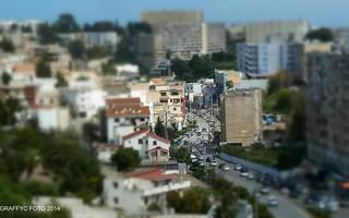 Alger, Sidi Yahia