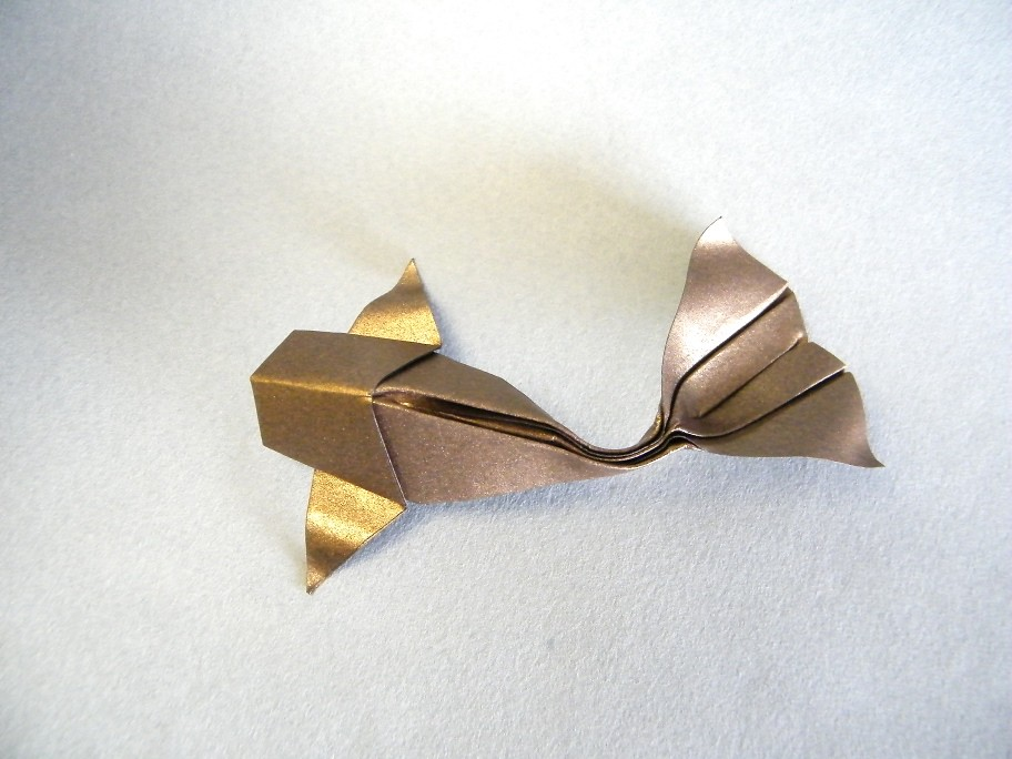 The world 39 s best photos of koi and origami flickr hive mind for Origami koi fish