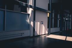 Lightfall (Kalden.D) Tags: light sunlight canada canon photography daylight day legs metro montreal leg stm rtl
