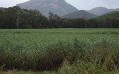 7 Yakapari-Seaforth Road, The Leap QLD