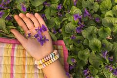 Eating outside (Nathalie Le Bris) Tags: main hand mano flor violette violeta flower violet cenital