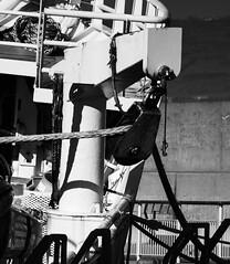 Hauled In (JmiaJ) Tags: green ships sea transport ship transportation cargo shipping ocean freight vessel boat industry water export nautical industrial trade business harbor sky global international port commercial marine heavy commerce dock economy equipment merchant maritime aerial fishing fishingship bangor northernireland uk hoist tackle ropes
