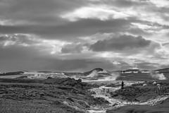 Hochland - entlang derRoute F45 (Agentur snapshot-photography) Tags: island iceland reise reisen landschaft landschaften landschaftsaufnahme landschaftsaufnahmen berge hochkand hochland reiseroute trekking geothermie geothermischesvulkan geothermischesvulkangebiet lavagebiet vuklangebiet vuklangebiete seen heissequellen fumerol fumerole sehenswürdigkeit sehenswürdigkeiten hveravellir isl