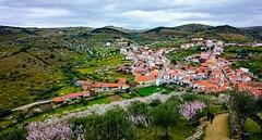 Castelo Melhor (vmribeiro.net) Tags: vila nova de foz côa portugal aldeia castelo melhor amendoeras sony z1