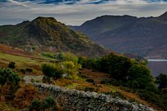 Rannerdale Knotts (Peter Quinn1) Tags: englishlakedistrict lakedistrict cumbria buttermere autumn november landscape drystonewall rannerdaleknotts