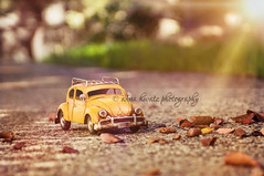 Mellow Yellow (AnnaHwatz) Tags: road autumn car sunshine yellow toy bokeh beetle autumnleaves ornament ontheroad sunflare odc2