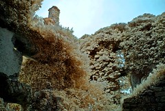 Menlo Castle (Tony Kelley) Tags: ir infrared irelandmenlocastle rivercarrib