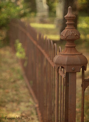 Cemetery Fence (peppermcc) Tags: cemetery fence iron rusty lewisville hff