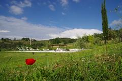 Gte Mezzano - Via Mezzano - Strada in Chianti (vince_68) Tags: florence strada italia via tuscany chianti firenze toscana toscane italie mezzano