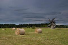 Hiiumaa landscape