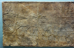 Lion Hunts of Ashurbanipal, king preparing for hunt (profzucker) Tags: sculpture london art ancient iraq lion palace relief beginning britishmuseum gypsum tigris mosul hunt assyrian excavated ashurbanipal neoassyrian ninevah rassam 645bce