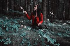 Le th est servi- (Mila Photographie) Tags: wood red fashion tea magic conceptual levitate fairytail