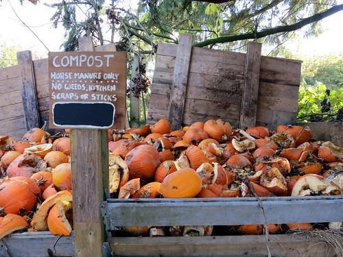orange broken rotting vegetables sign vancouver pumpkins pile compost southlands horsemanure southlandsfarm