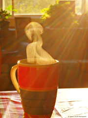 Caf (Agns Laure) Tags: morning sun france hot cup tasse coffee caf breakfast table soleil steam heat tablecloth rayon chaud matin olympusstylus chaleur nappe petitdjeuner vapeur lapalisse rgionauvergne dpartementdelallier