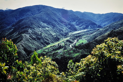 Western New Guinea - Baliem Valley - View Over Dani Village