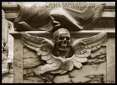 Skull & wings (DameBoudicca) Tags: italien italy rome roma church skull wings italia iglesia kirche chiesa ala glise rom italie kyrka crne kranium hallenkirche  crneo schdel vinge  vingar  santama