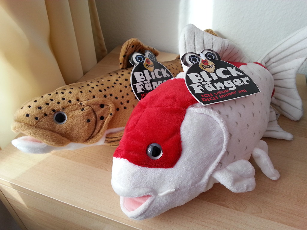 The world 39 s best photos of fish and plush flickr hive mind for Koi fish plush