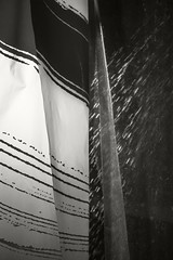 Morning Shower (frntprchprss) Tags: morning light blackandwhite water shower curtain jamesgehrt