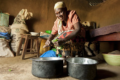 Improving Nutrition with Kale (FeedtheFuture) Tags: africa kenya extension horticulture nutrition
