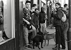 Brick Lane Boys (Becky Frances) Tags: city portrait urban blackandwhite london candid streetphotography shoreditch bricklane socialdocumentary eastend eastlondon 2014 pollyblue