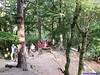 """24-05-2014 Voorthuizen (14) • <a style=""""font-size:0.8em;"""" href=""""http://www.flickr.com/photos/118469228@N03/14260442464/"""" target=""""_blank"""">View on Flickr</a>"""