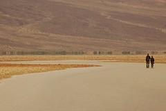 Onto the salt flat (A. Drauglis) Tags: california ca sea nationalpark desert flat nps salt basin level deathvalley below np badwater badwaterbasin lowestpoint