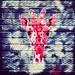 #pink #giraffe? Why not. #Gent #Belgium #streetart #graffiti #visitgent #streetart_daily