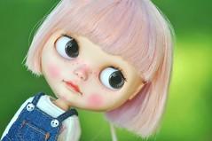 Why Y Y? *Strawberry Muffin**