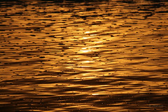 Golden Tide (VenturaMermaid) Tags: sunset beach gold dusk tide goldenhour goldentide tideatsunset