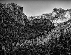 Shadow of the Captain (Malenkov in Exile) Tags: park sunset bw nationalpark national yosemite halfdome elcapitan bridalveilfalls yosemitevalley cathedralrocks