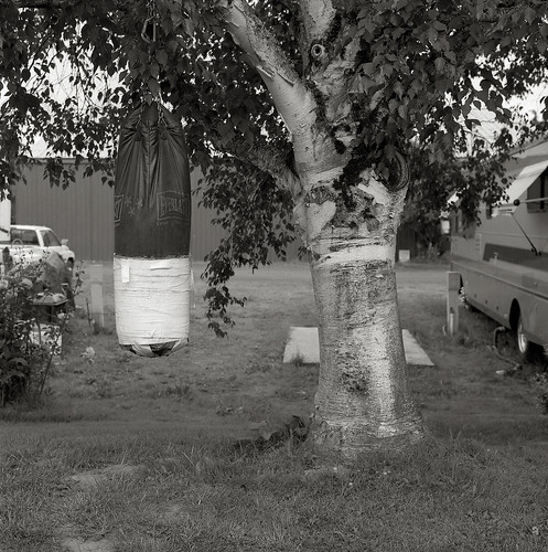 Punching Bag, Trailer Park, Sauvie Island