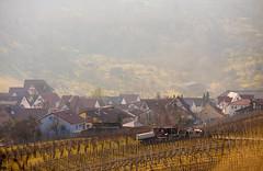 IMG_5074 (Lebemitgott) Tags: wandern badenwrttemberg sddeutschland weinberge beutelsbach waiblingen endersbach weinstadt remsmurrkreis schnait remshalten