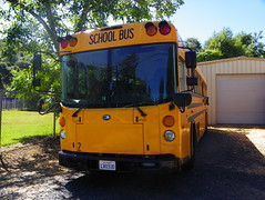 School Bus (kevin42135) Tags: california county blue school lake bus bird all american a3 re lucerne elementary d3 a3re d3re