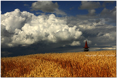 (tozofoto) Tags: travel summer sky holiday storm travelling tower colors field weather clouds canon landscape lights europe hungary shadows grain stormy summertime zala tozofoto