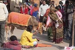 Un'offerta per il Sadu (ANAM-) Tags: india color digitale mercato viaggi ritratti avventurenelmondo d700 24120f4