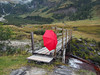 Lost and found ~ (rotraud_71) Tags: umbrella austria rainyday footbridge salzburgerland kolmsaigurn nationalparkhohetauern raurisertal vanagram blinkagain